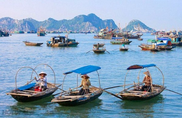 Come to Cat Ba to experience the peaceful life of the ancient Cai Beo fishing village